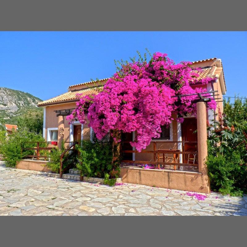 Efrosini Village