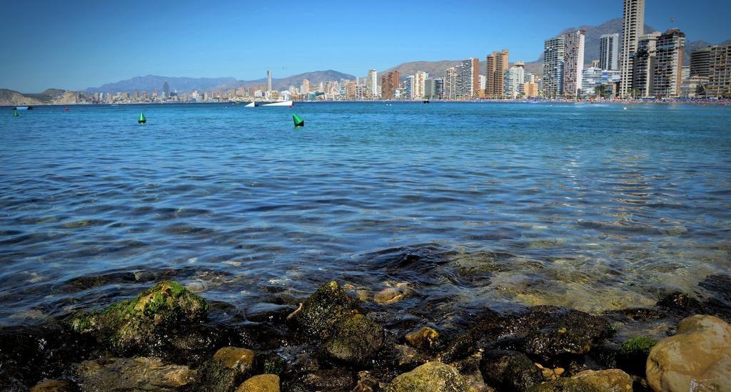 Lido in benidorm spain holidays from 231pp loveholidays - Swimming pool repairs costa blanca ...